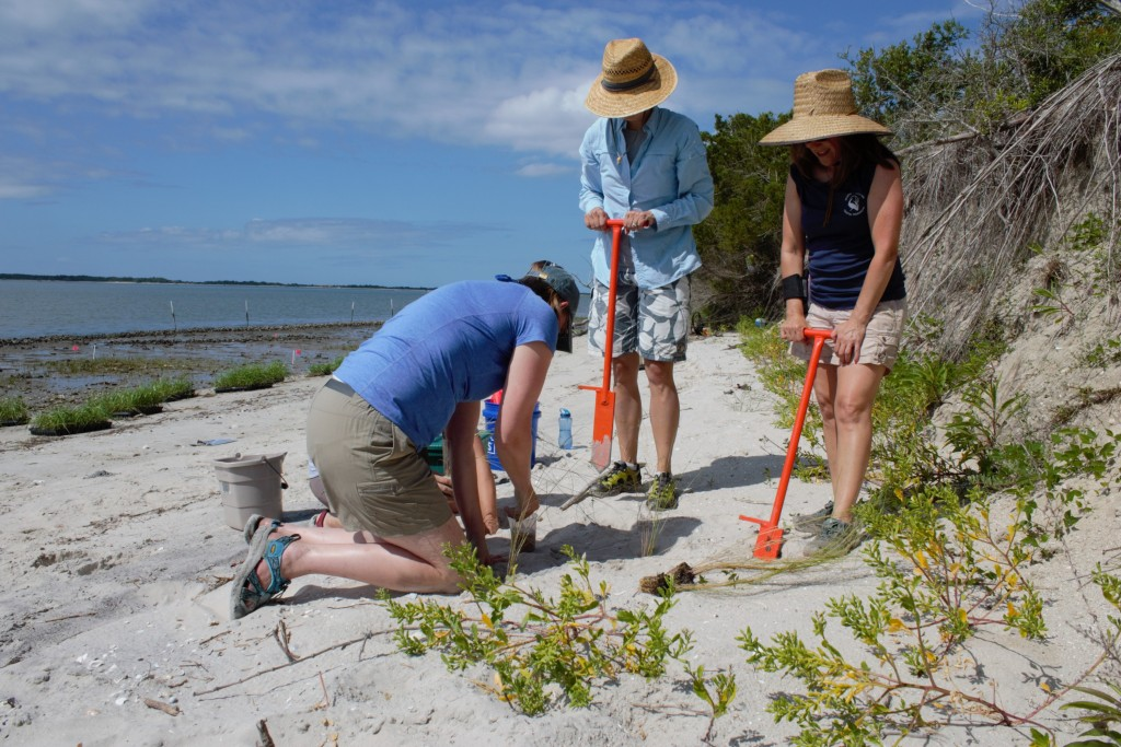 N.C.-Coastal-Reserve-and-Natinoal-Estuarine-Research-Reserve_NEED-TO-CREDIT-2-e1457450810312