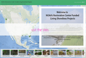 Map of living shoreline projects