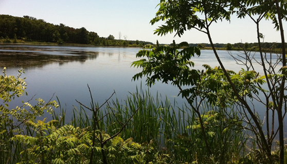 A view of the Muskegon Lake Area of Concern and NOAA Habitat Focus Area. (Credit: Liz Mountz)