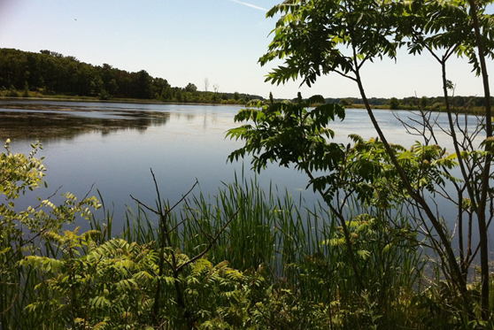 A view of the Muskegon Lake Area of Concern and NOAA Habitat Focus Area.