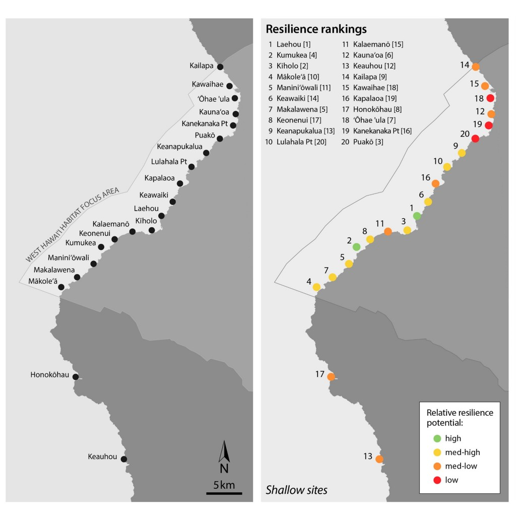 Left: Map of study sites in South Kohala, West Hawaiʻi where shallow and deep coral reefs were assessed within the NOAA West Hawaiʻi HFAn and North Kona. Right: Coral reef health and resilience rankings for each site. Healthier reefs more resilient to stress were observed in the southern portion of the West Hawaiʻi HFA, while less healthy and resilient reefs occurred further to the north.