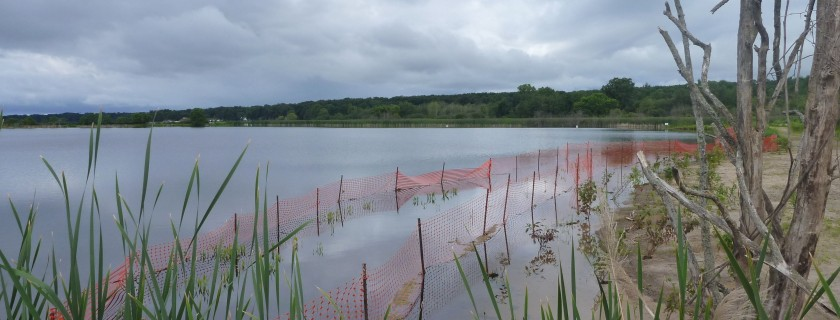 Advancing Progress in NOAA's Habitat Focus Areas
