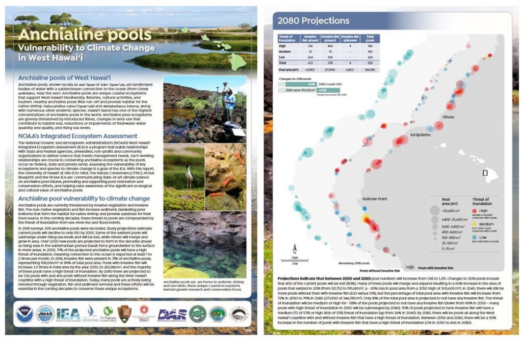 anchialine pools climate change vulnerability brochure