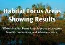 NOAA's Habitat Focus Areas: Showing Results